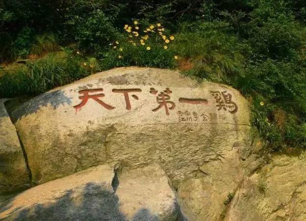 我公司组织南湾湖、鸡公山景区旅游活动